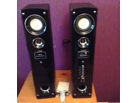 2 Speaker karaoke system with remote control and instructions still in box