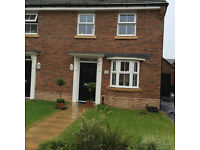 New house 3 bed garden to rent, Glas y dorlan