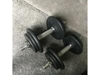 Dumbbells pair, weights