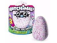 Hatchmicals Pink Pengulas Egg Brand New (In Box)