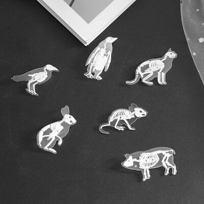 Clear Acrylic Animal Skeleton Pin Brooch Mouse Rabbit Penguin Bird Pig Cat Pins