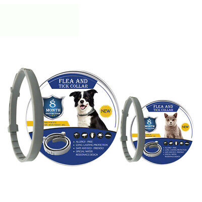 Flea And Tick Collar for Dogs Cats - 8 Months Protection - One Size Fits All (One For One And One For All)