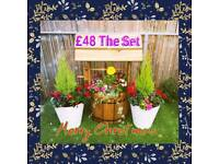 Wishing Well Planter Sets Free Hanging Basket With Every Set