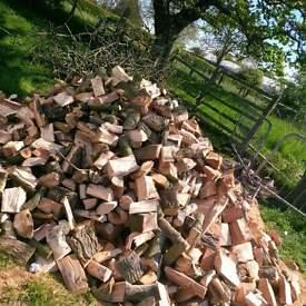 seaosned hardwood logs forsale