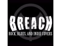 Bass Player needed for hard working Rock, Blues, and Indie covers band