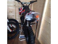 Mini crx dirt bike