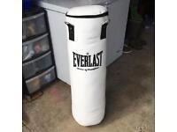 Everlast 4ft Hanging Punchbag