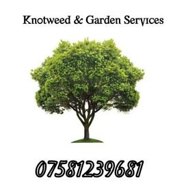 Garden services & Overgrown ground clearance diy