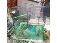 Free hamster and bird cage