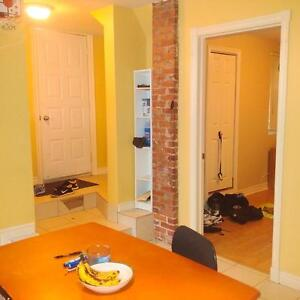 1 Bedroom For Rent - ON DAL CAMPUS - May 1 2017 - $615 each