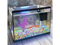 18L Glass Aquarium Fish Tank Starter Kit Set - BRAND NEW Air Filter Pump Net Stone LED Light