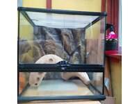 Terrarium / Vivarium 46cm x 46cm x 46 cm, With Accessories. For Reptles/Aphibians.