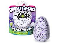 Hatchimals brand new..