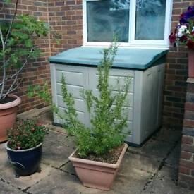 Rosemary Bush (without pot) £12