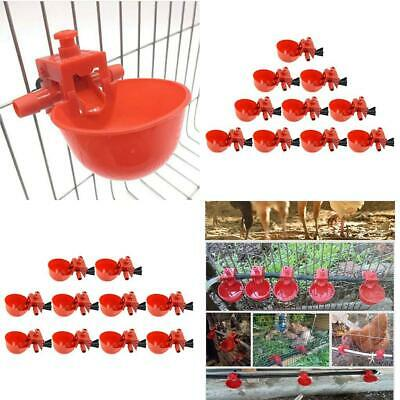 20pcs Poultry Chicken Automatic Feeder Drinkercoop Bird Water Drinking Cups