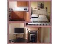 1 BD room flat for rent for festival