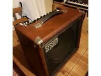 Sessionette 75 guitar amp