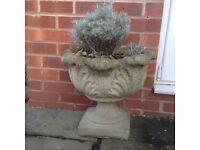 Pair of Well Weathered Garden Urns on Pedestals