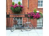 Downtown Ladies Dutch Style Bike