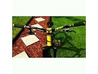 Giant STP Jump Bike/Trials/MTB