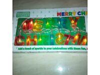 Christmas reindeer & lights
