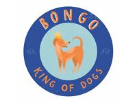 Dog Walking, Daycare, Boarding and Pet Taxi in Edinburgh