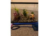 Fish Tank including accessories and food