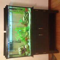 Beautiful 60 Gallon complete Fish tank with Stand.