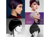 AAA MODELS WANTED for WELLA TREND VISION