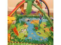Fisher-Price Rainforest Play Gym