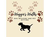 Dog Walking | Pet Sitting | Pet Pop Ins
