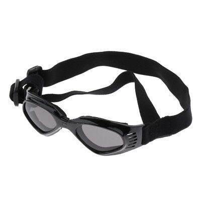 Kleine mittelgroße Hundewelpen Haustier Schutzbrillen Anti Wind