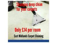 Carpet rug and upholstery cleaning service