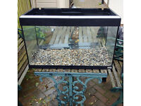 Fluval Roma 125litre Aquarium Fish Tank +extras (includes some snails if you want some)+Cabinet etc