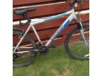 Apollo verge bike