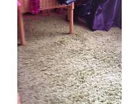 Large lime green rug