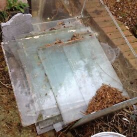 Glass window panes from old shed now taken down. FREE FOR ANYONE WISHING TO COLLECT