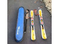 Salomon Snow Blades & Bag