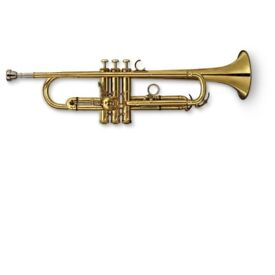 Beginner/experienced Trumpet player wanted for band
