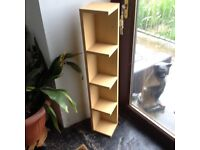 BEECH EFFECT CD/DVD BOOKCASE