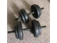 Exercise weights / dumbbells