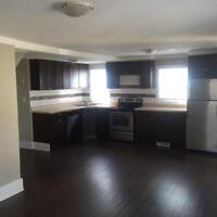 Gorgeous  4 bd family home with double car garage and fence yard
