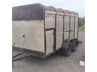 IFOR WILLIAMS 12x6 TRAILER. NEW TYRES and WHEELS BEARINGS
