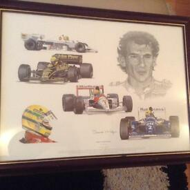 Collectable Ayrton Senna by Stuart McIntyre. 1960-94 in frame