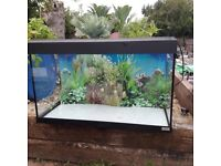 FISH TANK WITH LIGHTS , AIR PUMP .