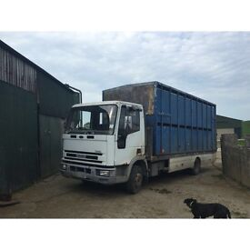1997 Ford Iveco livestock Lorry