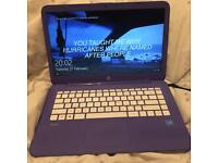 Purple HP Stream 14