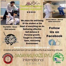Non Profit Martial Art Classes