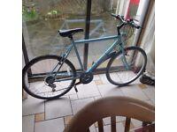 Blue hybrid Falcon Bike