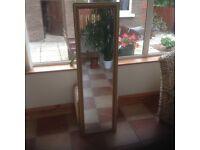 Tall narrow gilt teamed mirror